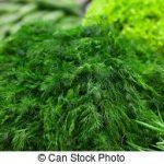 tas-de-vert-fenouil-dans-supermarché-photo-sous-licence_csp11947626